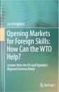 OPENING MARKETS FOR FOREIGN SKILLS: HOW CAN THE WTO HELP?